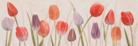 Decorado Tulip